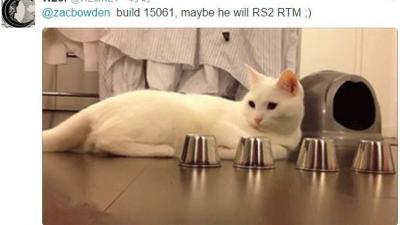 Wzor:Win10创造者更新RTM正式版本号可能是15061
