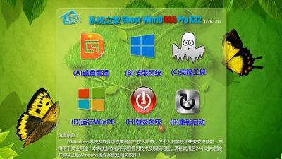 系统之家Ghost Win10 X32专业版(17763.55)