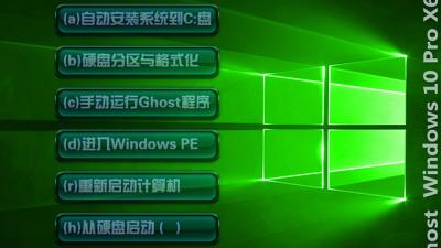 Ghost Windows10 X64专业版(18362.175)